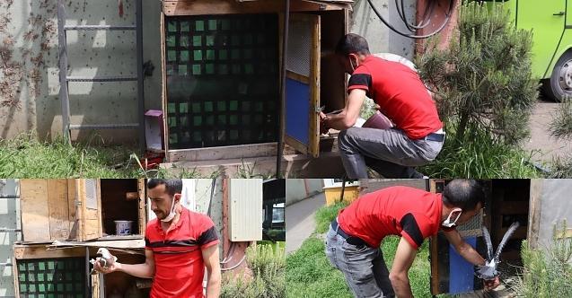Aç kalan güvercinler için İzmit Belediyesi seferber oldu