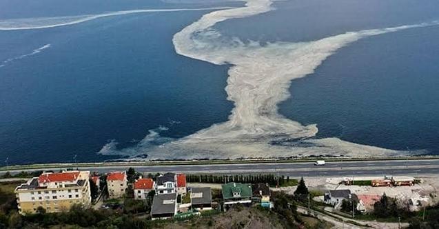 İzmit Kent Konseyi Başkanı Erol, Körfez'e kıyısı olan tüm kent konseylerine 'acil' çağrısı yaptı!