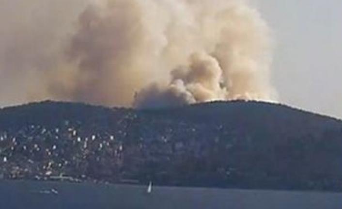 Heybeliada'da orman yangını kontrol altına alındı