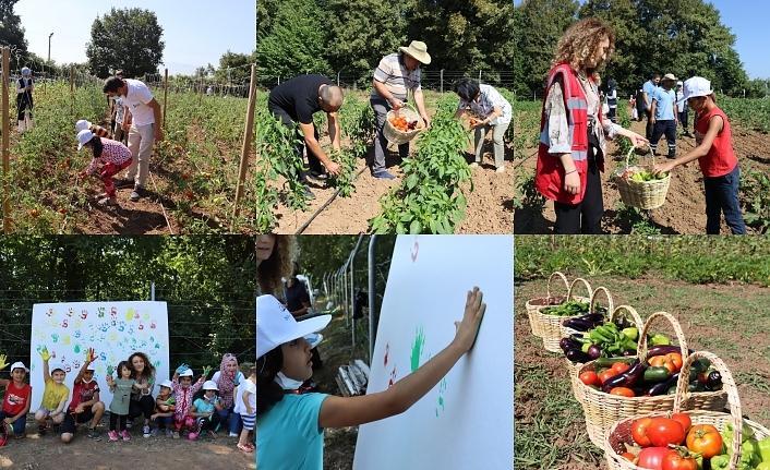 Tarımsal Üretim Bahçesi'ndesebzeleri çocuklar topladı